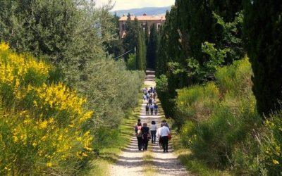Spring walk – 2013 edition