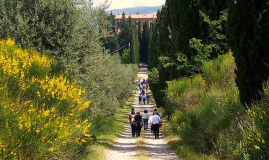 Passeggiata di primavera – edizione 2013
